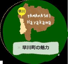 早川町の魅力