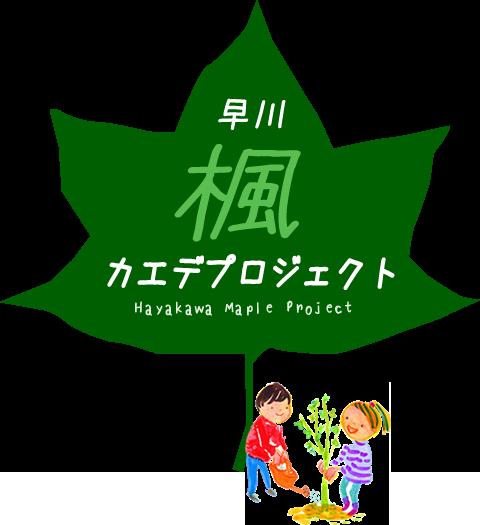 早川 カエデ プロジェクト